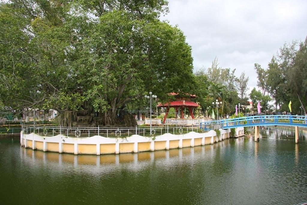 Cảnh hồ nước ngọt