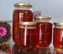 Mật ong rừng U Minh nguyên chất