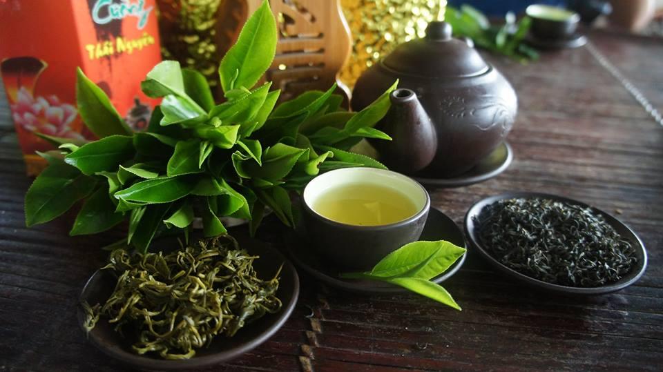 Trà Thái Nguyên thức uống cho sức khỏe